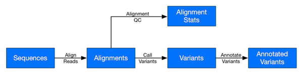 Typical genomics workflow